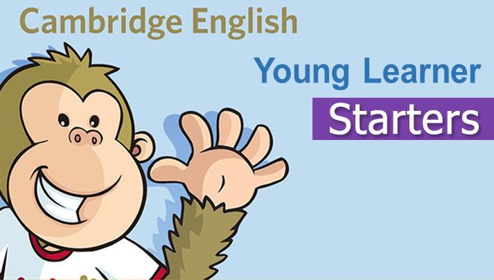 Cambridge YLE là gì? Cấu trúc bài thi YLE Starter, Mover, Flyer