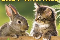 TỔNG HỢP TỪ VỰNG VỀ ĐỘNG VẬT KHI NHỎ BABY ANIMALS